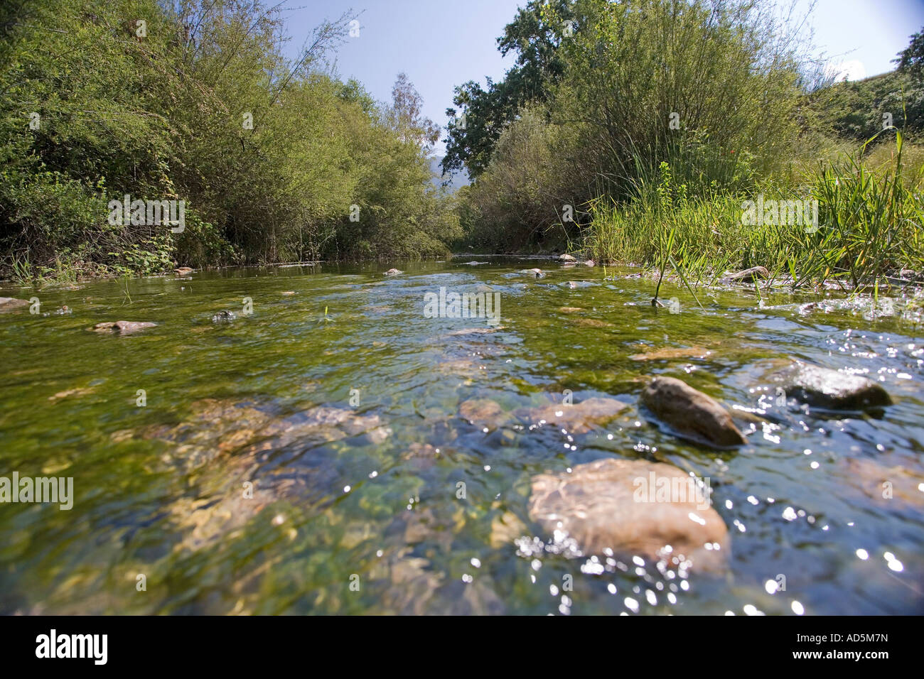 Exceptional Rocks In Spanish Part - 5: River Running Over Rocks In Spanish Countryside