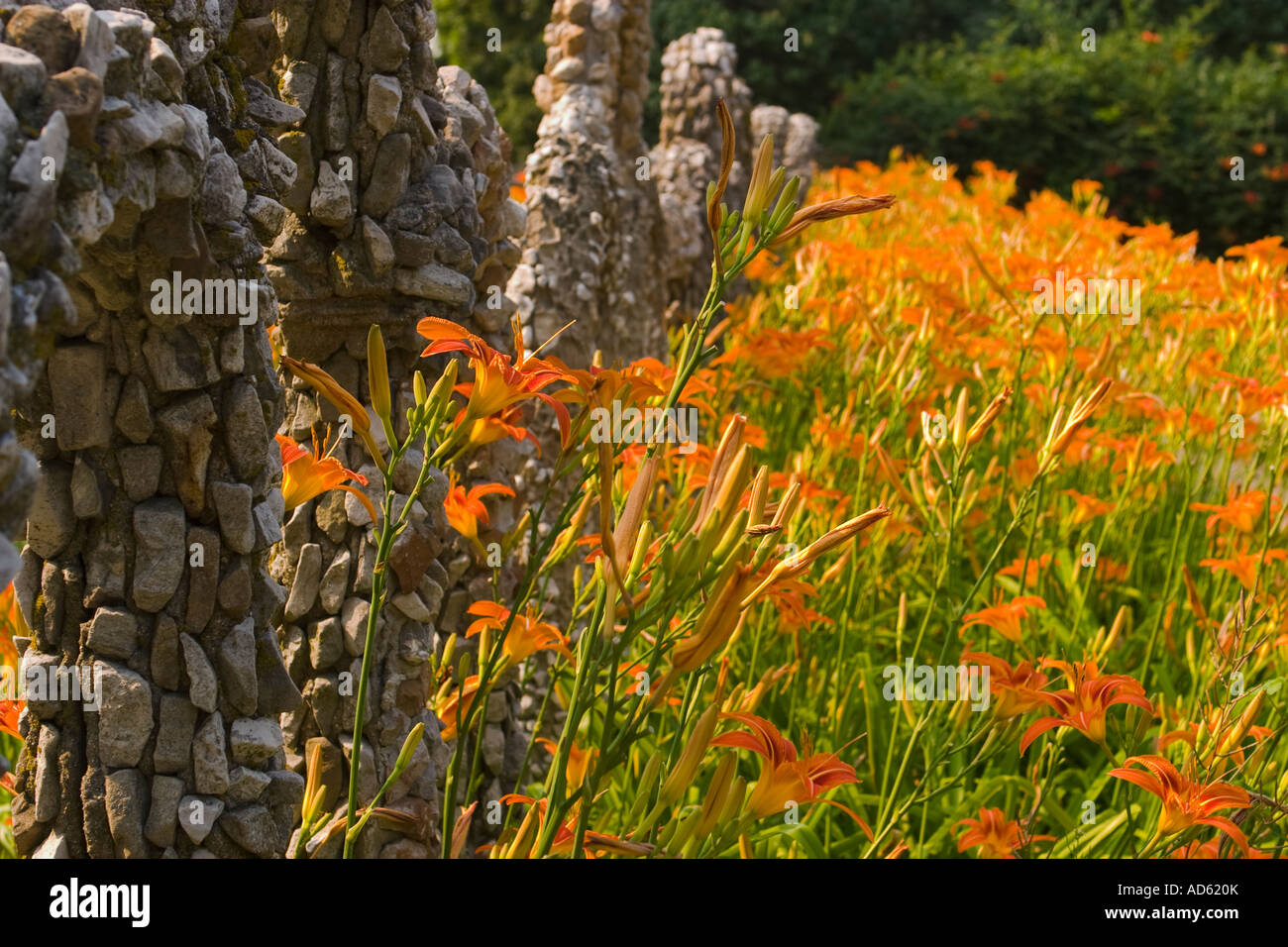 ILLINOIS Arcola Rock Structures And Flowers At Rockome Gardens Orange Day  Lilies Blooming