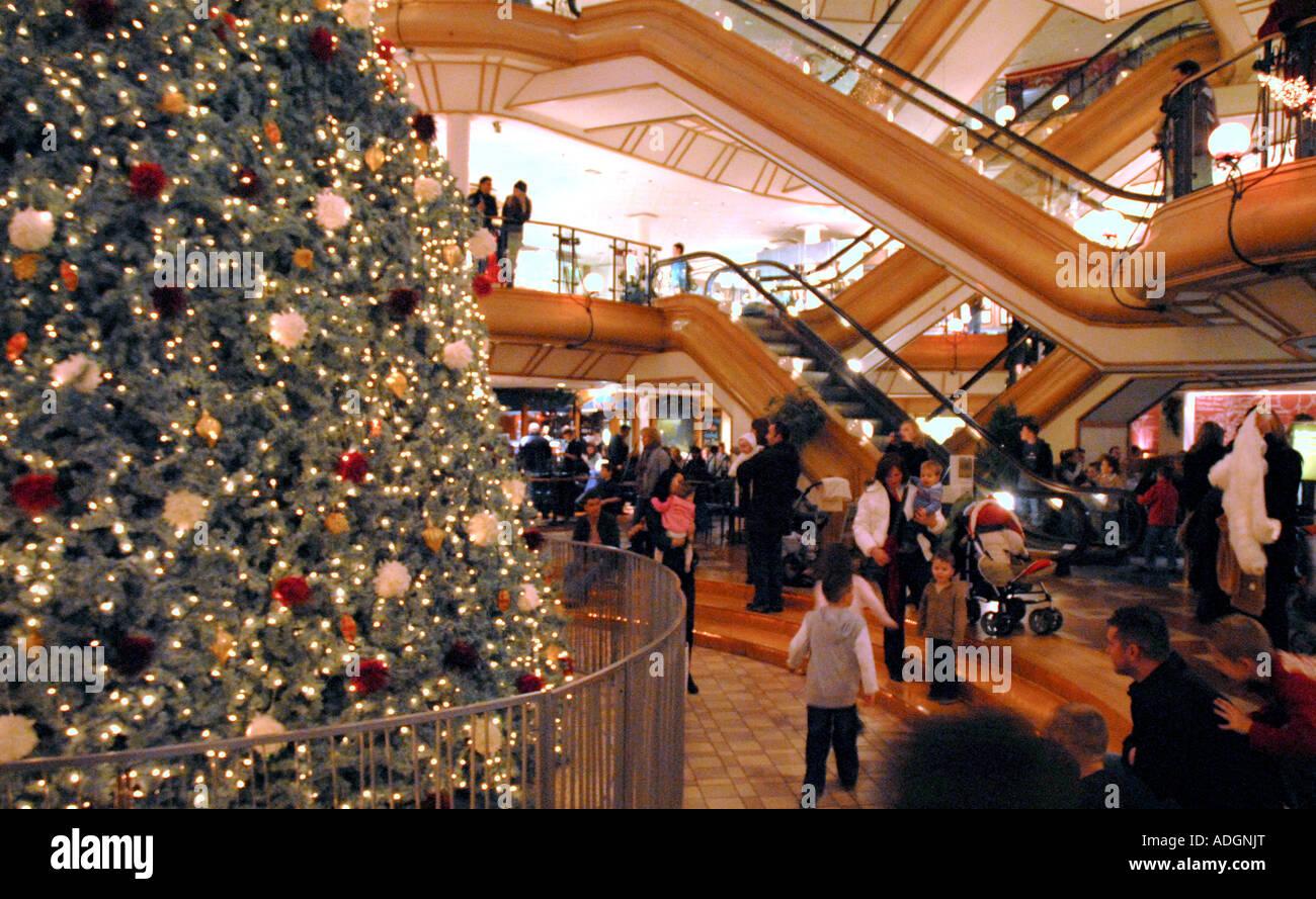 People Sitting Around Christmas Tree