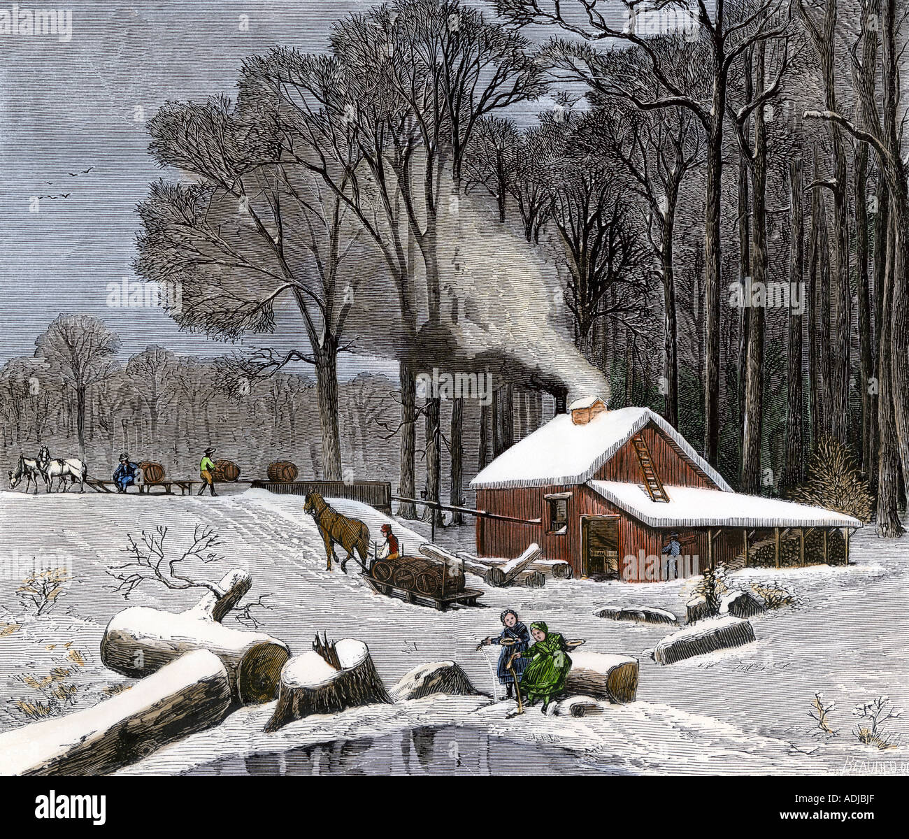 Wonderful image of Horsedrawn Sleds Hauling Sap In A Maple Sugar Camp 1800s Stock Photo  with #5E4B40 color and 1300x1199 pixels
