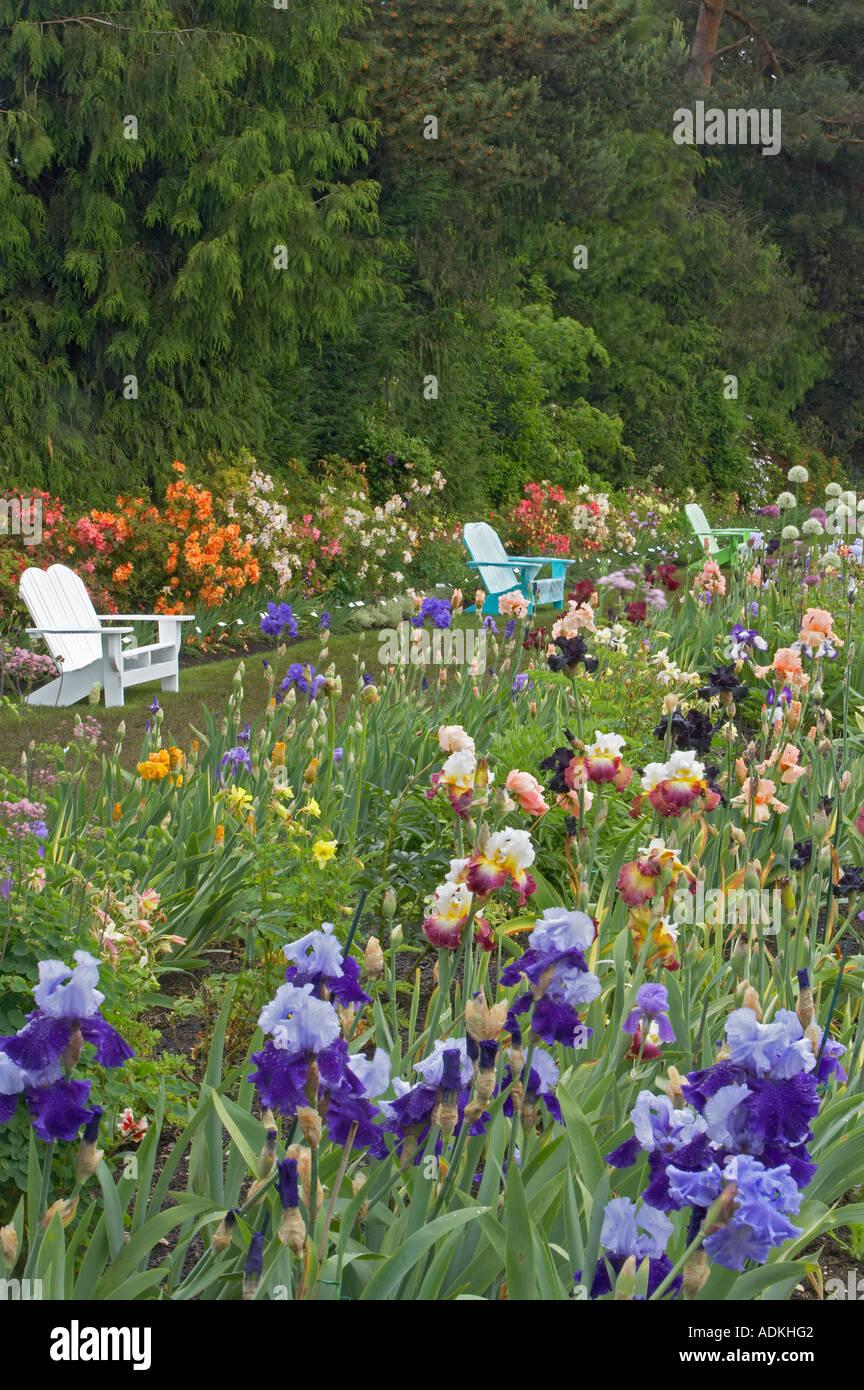 Iris Display Gardens With Benches Schreiner S Iris Gardens