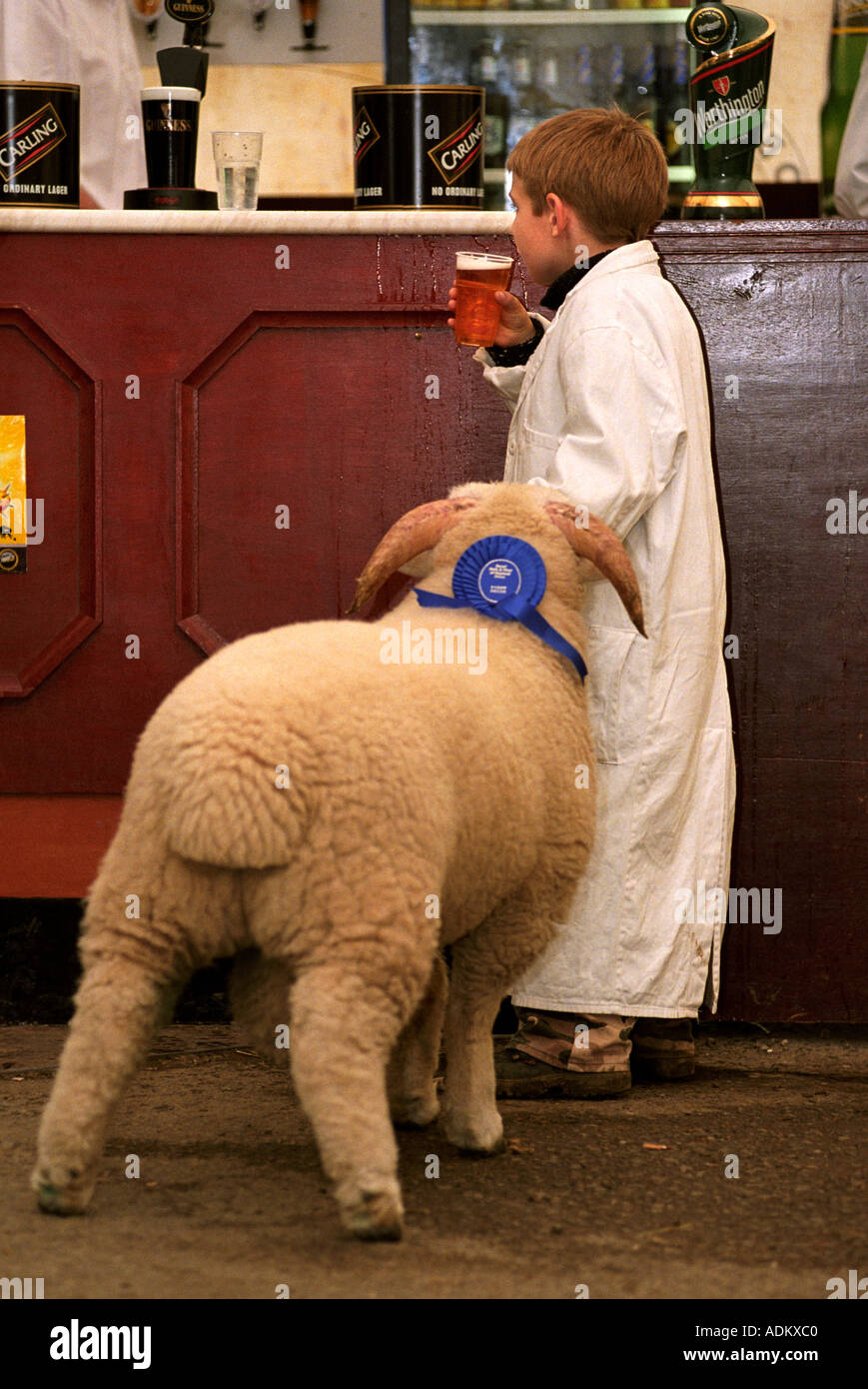 A YOUNG STOCKMAN IN THE BEER TENT AFTER SHOWING HIS SHEEP AT THE ROYAL BATH AND WEST SHOW SOMERSET UK & A YOUNG STOCKMAN IN THE BEER TENT AFTER SHOWING HIS SHEEP AT THE ...