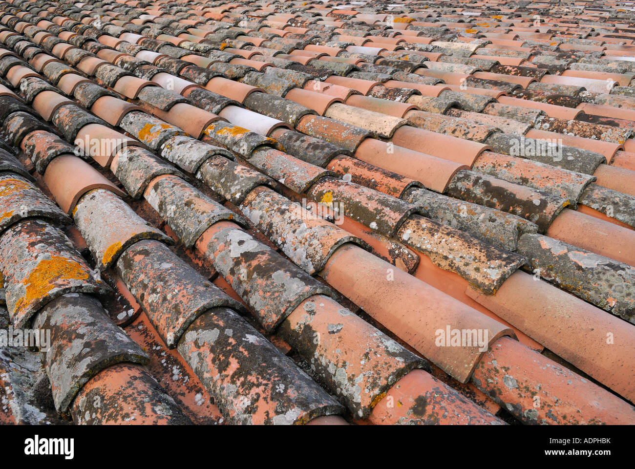 Mix Of Old And New Mission Clay Roof Tiles In Umbria Italy