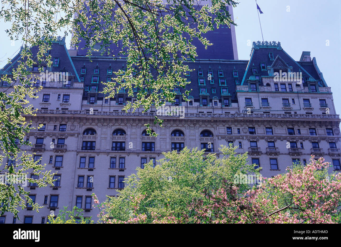new york city the plaza hotel seen from central park spring nyc stock photo royalty free image. Black Bedroom Furniture Sets. Home Design Ideas