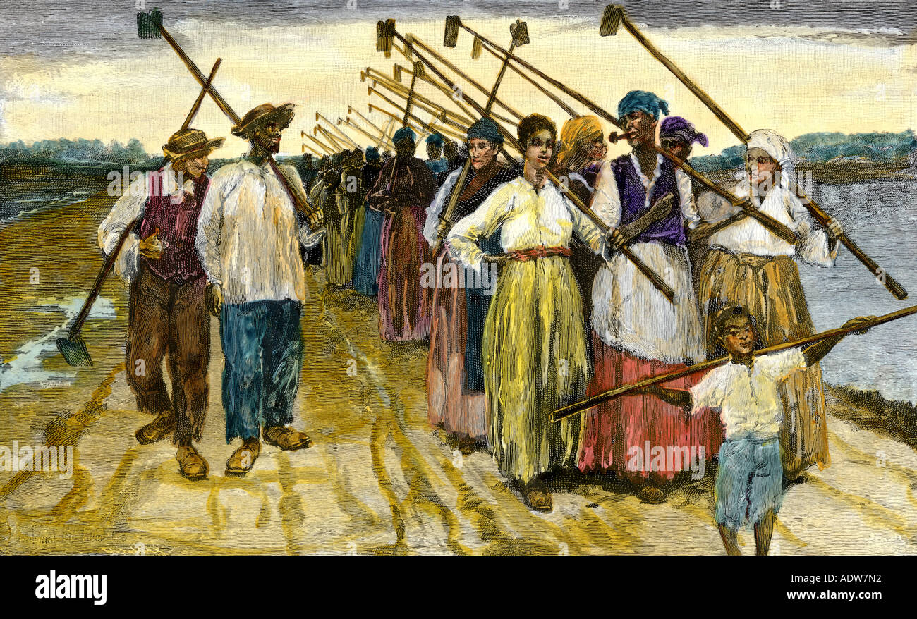 how africans americans have worked to Each of these pioneers achieved a first for african-americans  he traveled by  foot to baltimore, where he hoped he could get work on a ship.