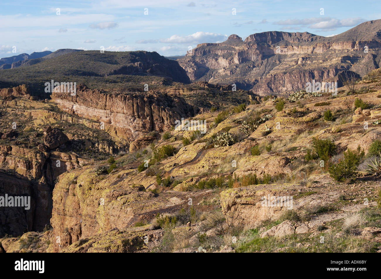 fish creek hill tonto national forest apache trail arizona