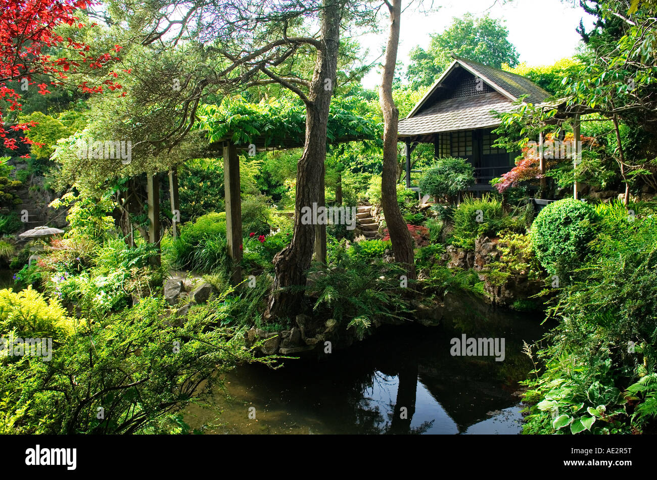 The japanese gardens in the grounds of the irish national for Garden design kildare