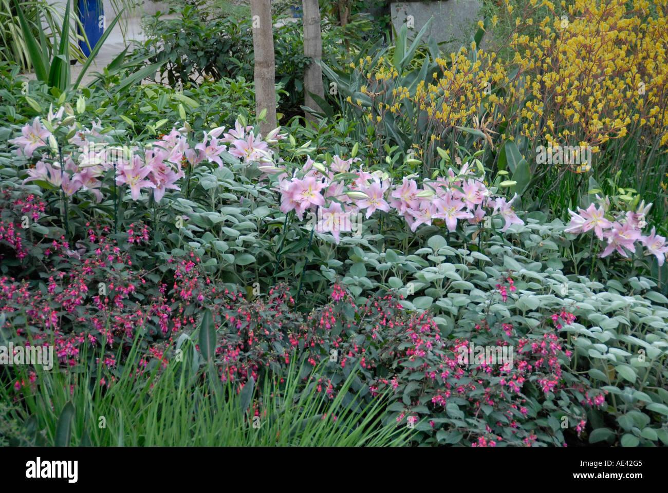 Spring Garden Flowers Philadelphia Pa Garden Ftempo