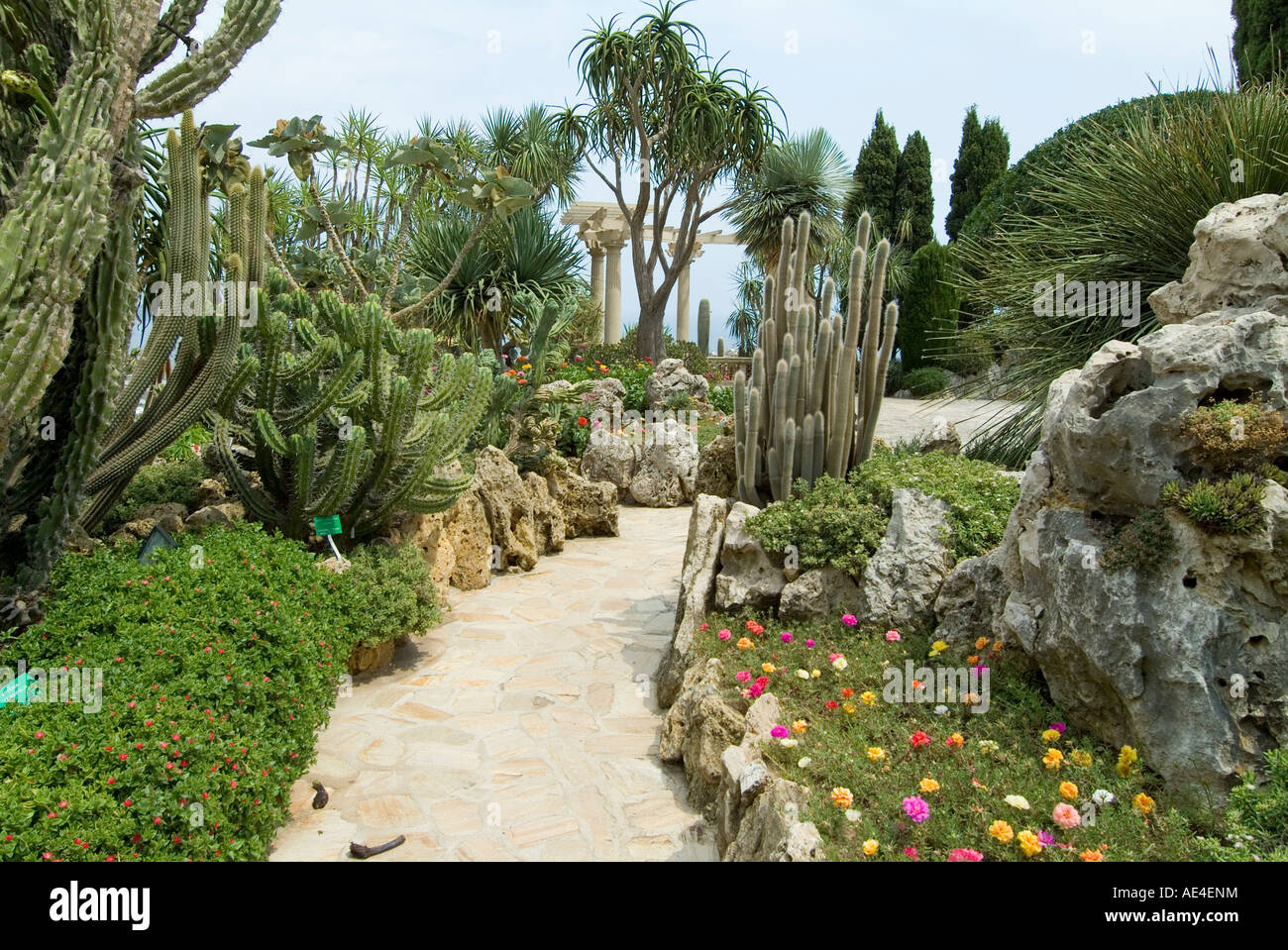 Jardin exotique moneghetti monaco europe stock photo for Jardin exotique monaco