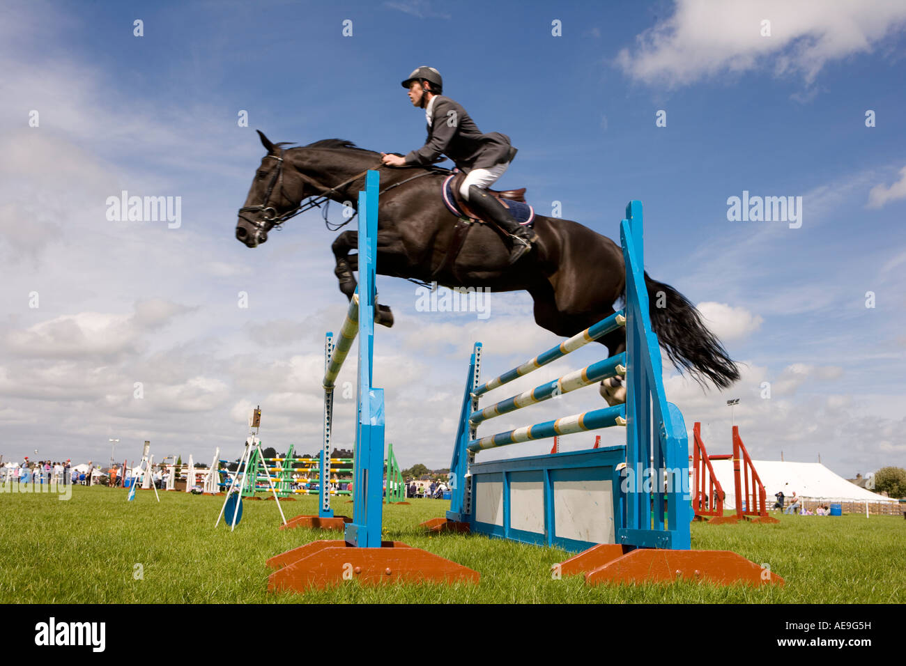 equestrian show jumping The world's jumping courses are waiting for you no matter whether it's sydney, paris, or new york: there are no limits to you and your horse's adventures.