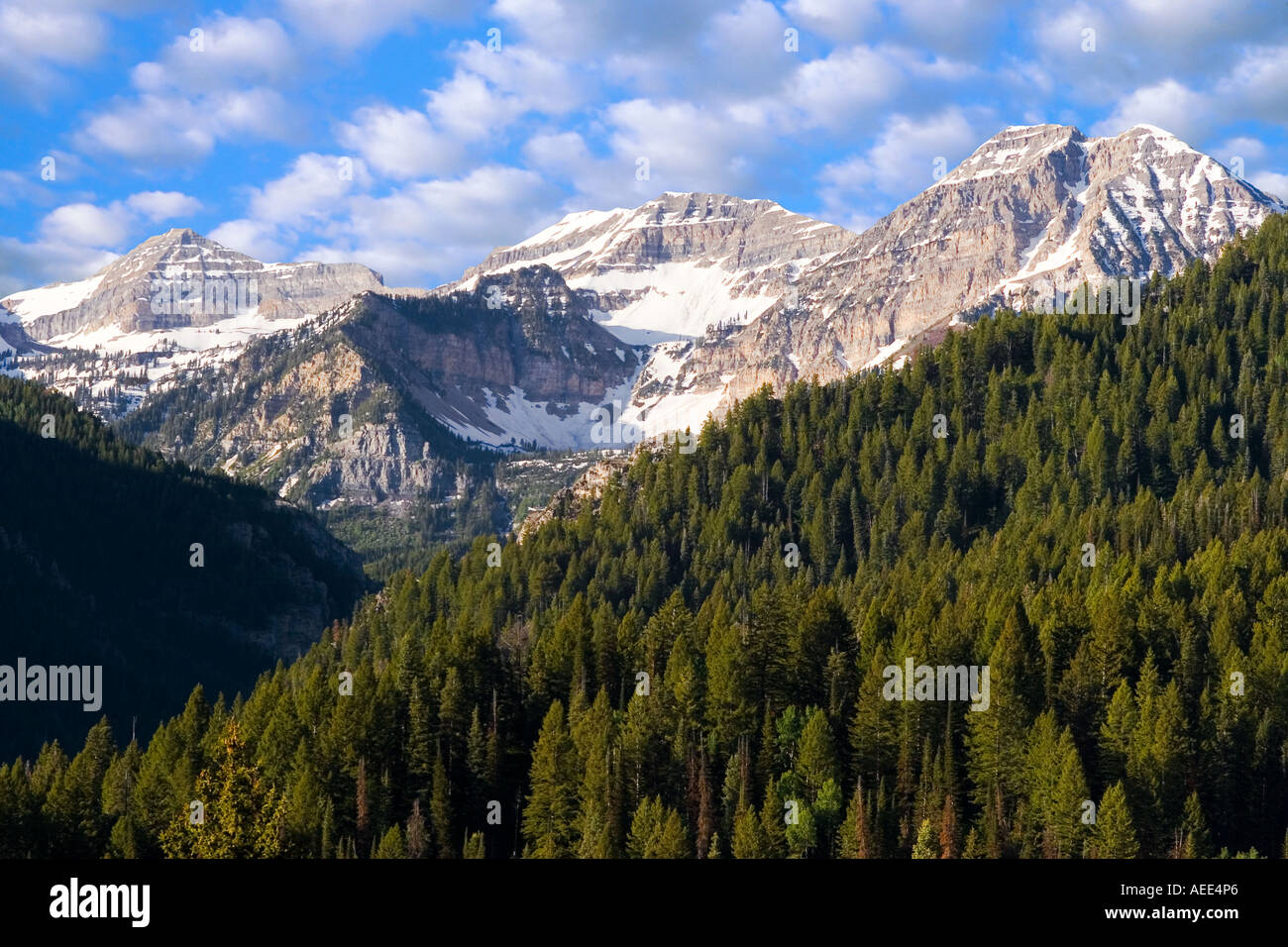 Mount Timpanogos in the Wasatch Mountains of northern Utah ...