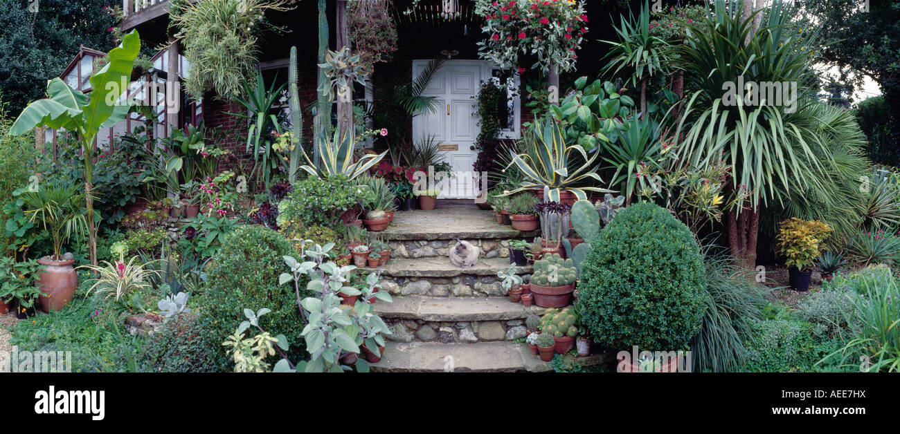 Stock Photo   View Of Will Giles Exotic Garden In Norwich, UK