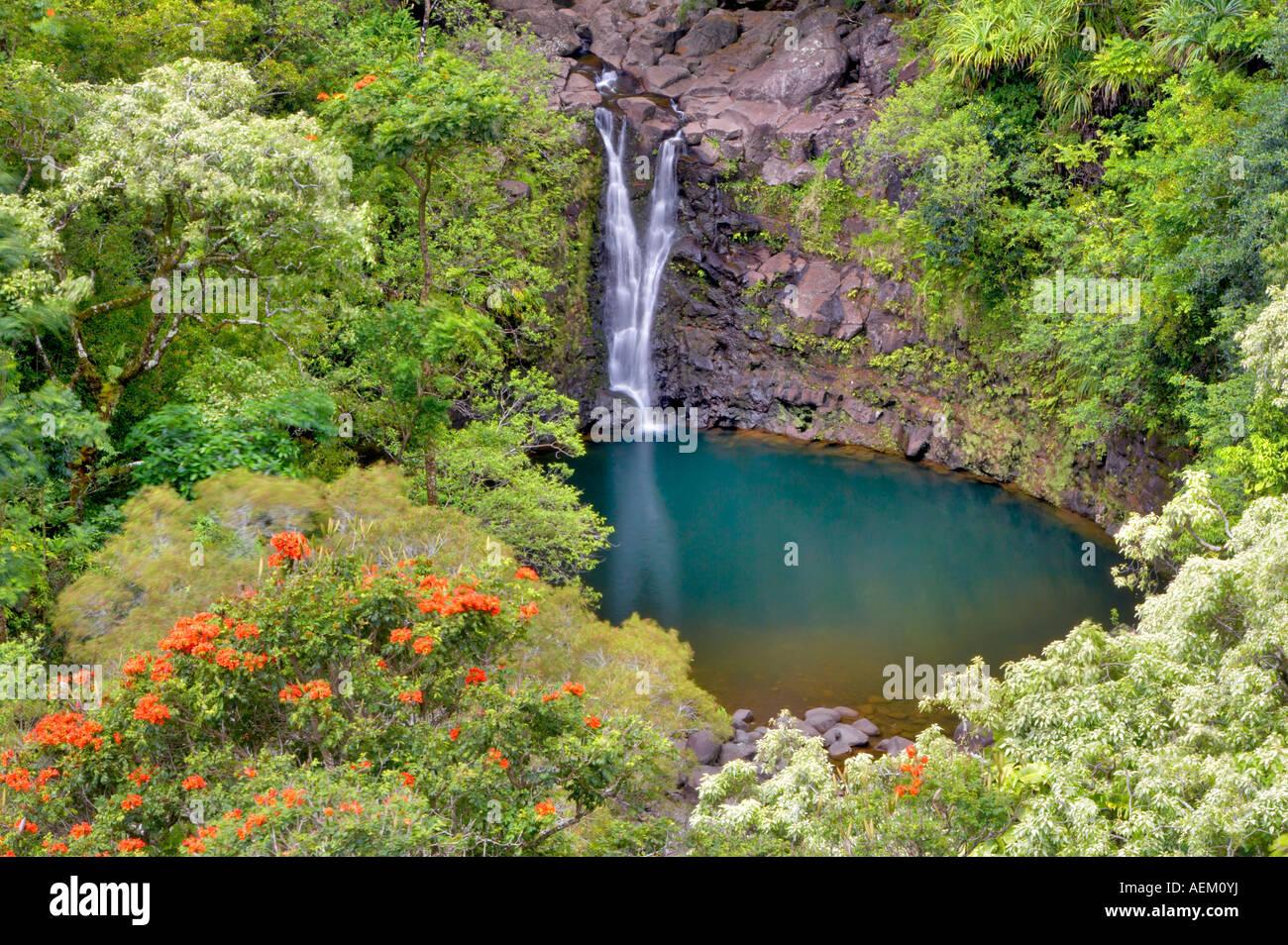 Puohokamoa Falls Pool Garden Of Eden Botanical Gardens