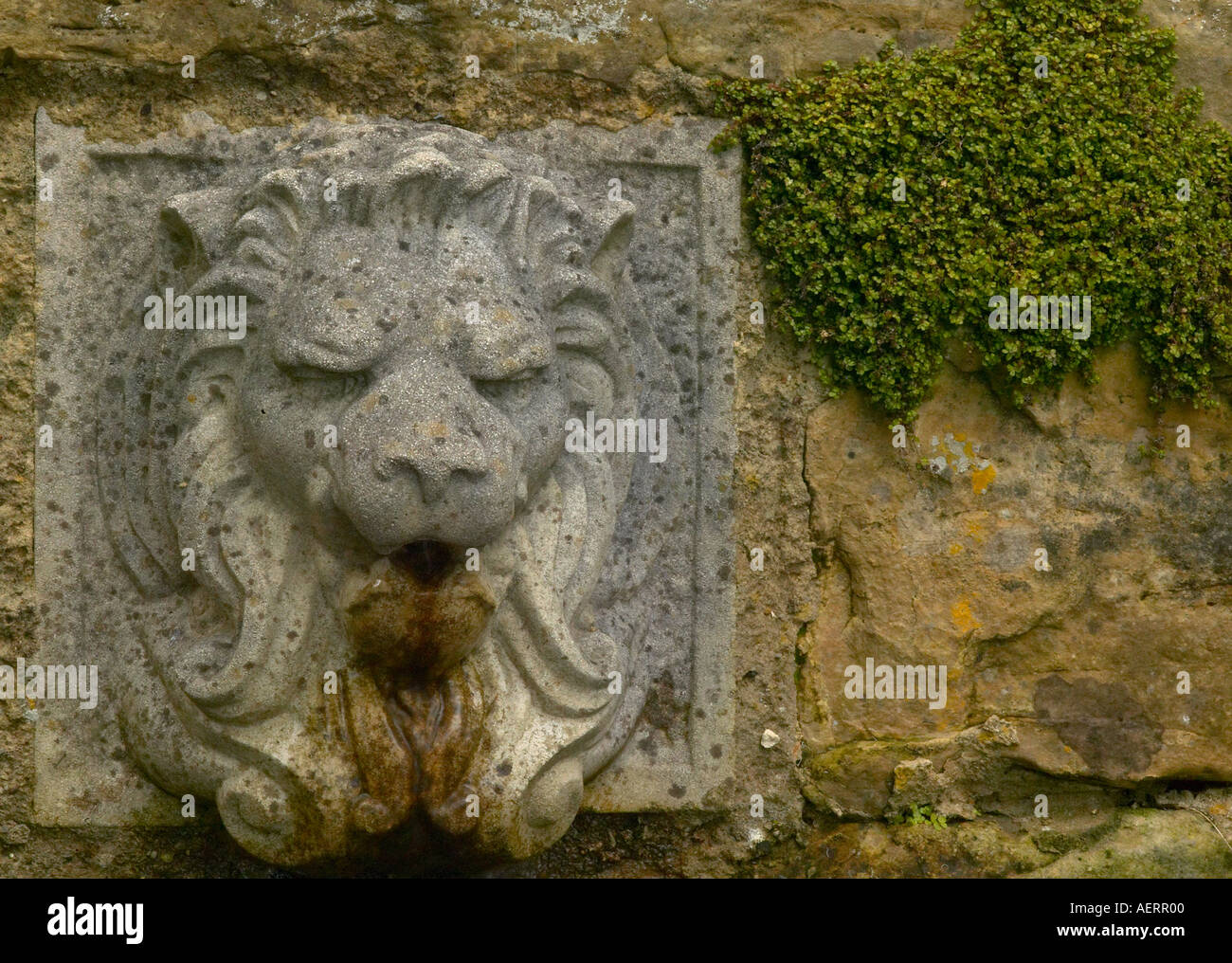 Old Stone Lion Fountain Head Set Into Garden Wall