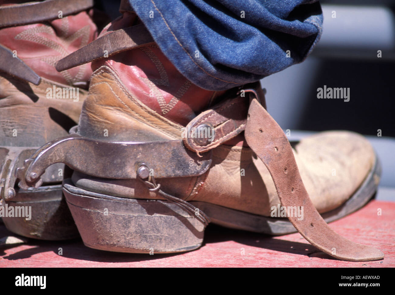 cowboy boots with spurs used by a cowboy for riding bucking ...
