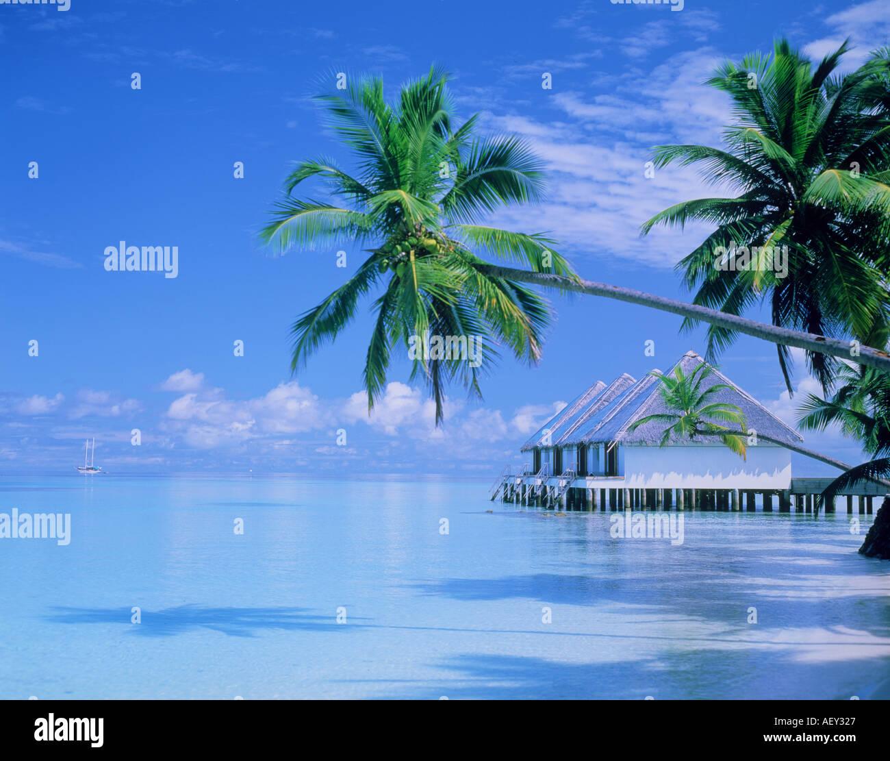 Boduhiti Coral Island North Male Atoll Maldives Stock