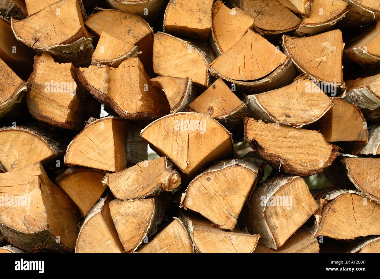 Cutting A Log : Cut logs firewood timber fuel for wood fire stock photo