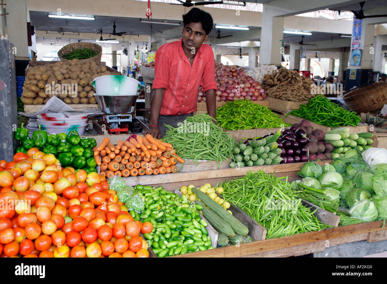 Vegetables neatly arranged by eager greengrocer and ...