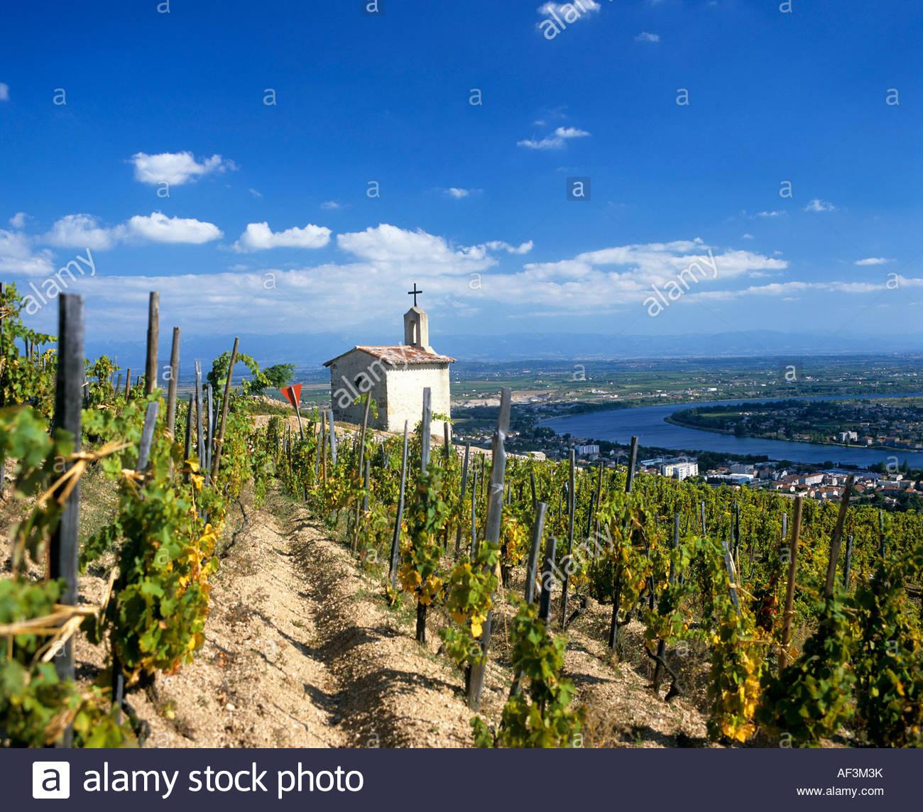 la-chapelle-vineyard-in-tain-lhermitage-
