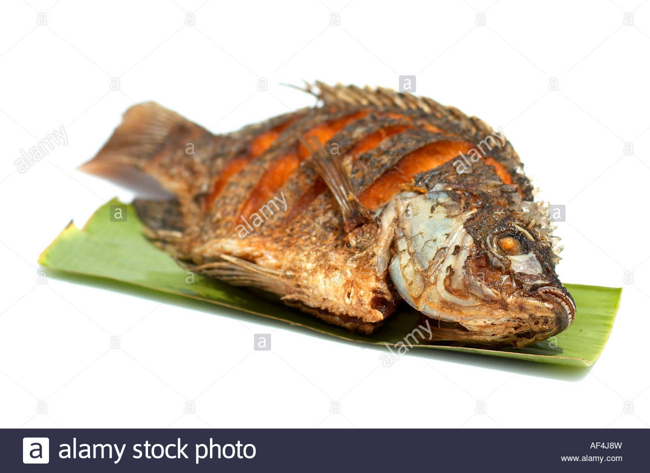 Deep Fried Tilapia Fish Stock Photo Royalty Free Image