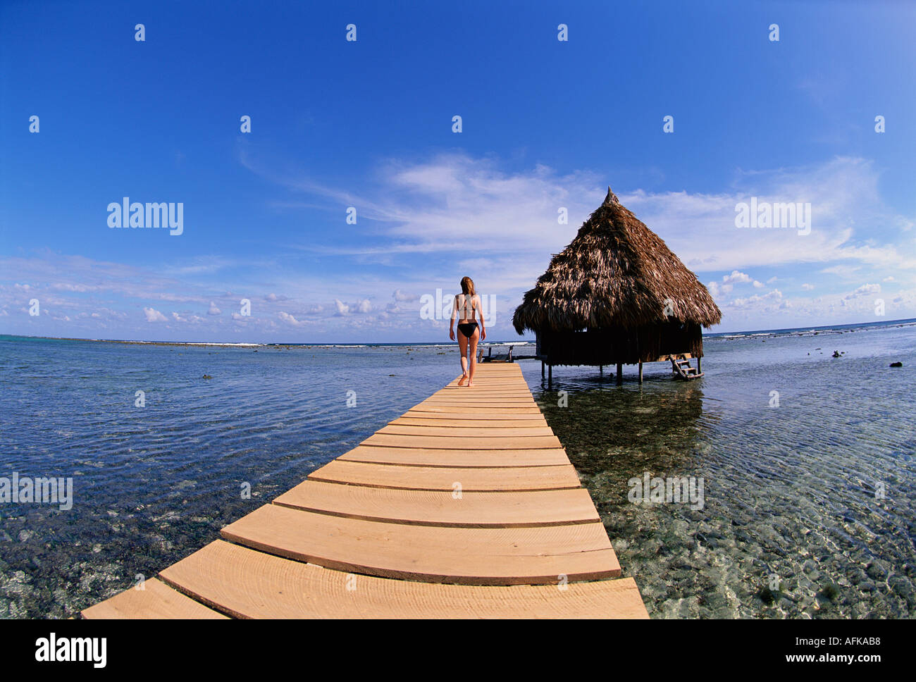 Woman On Walkway Toward Over Water Palapa Bungalow In Belize Caribbean Model And Property Released Image