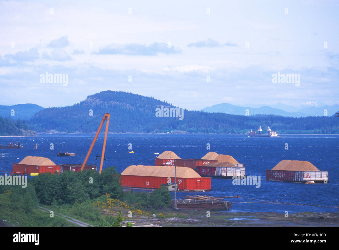 Wood Chips Loaded On Barges, Campbell River, Vancouver Island, Bc, British  Columbia, Canada  Pulp & Paper Industry