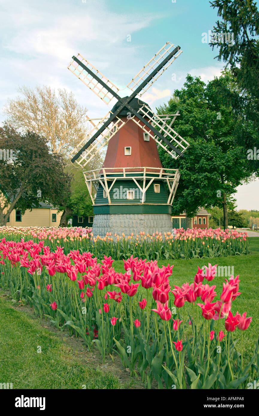 Garden Flower Windmills – Greenfain