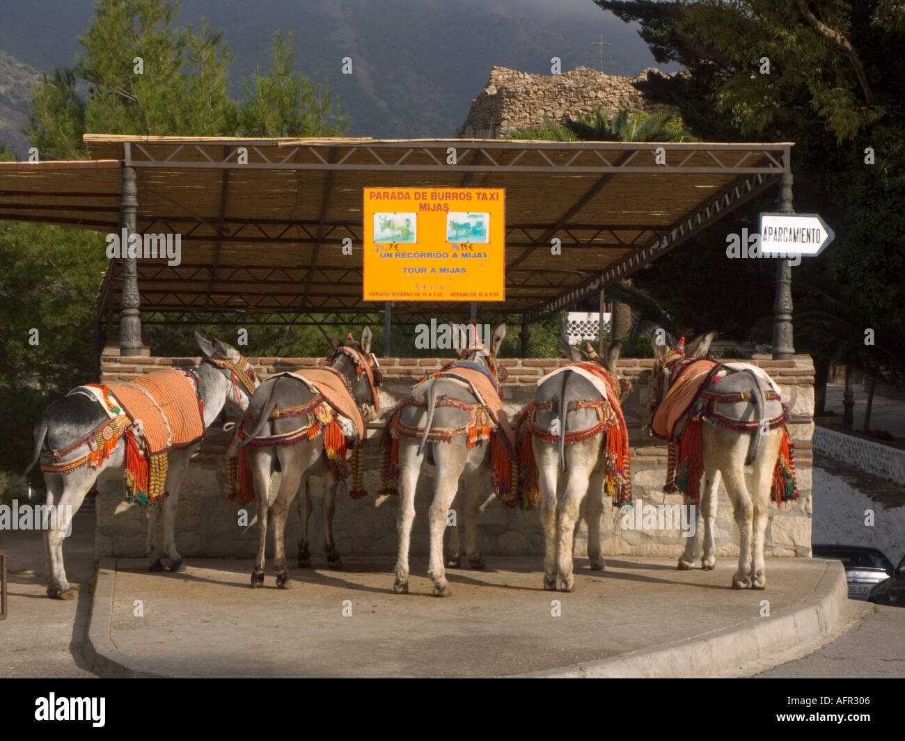 Burro donkey taxies wait in line in mijas show village for Burro blanco
