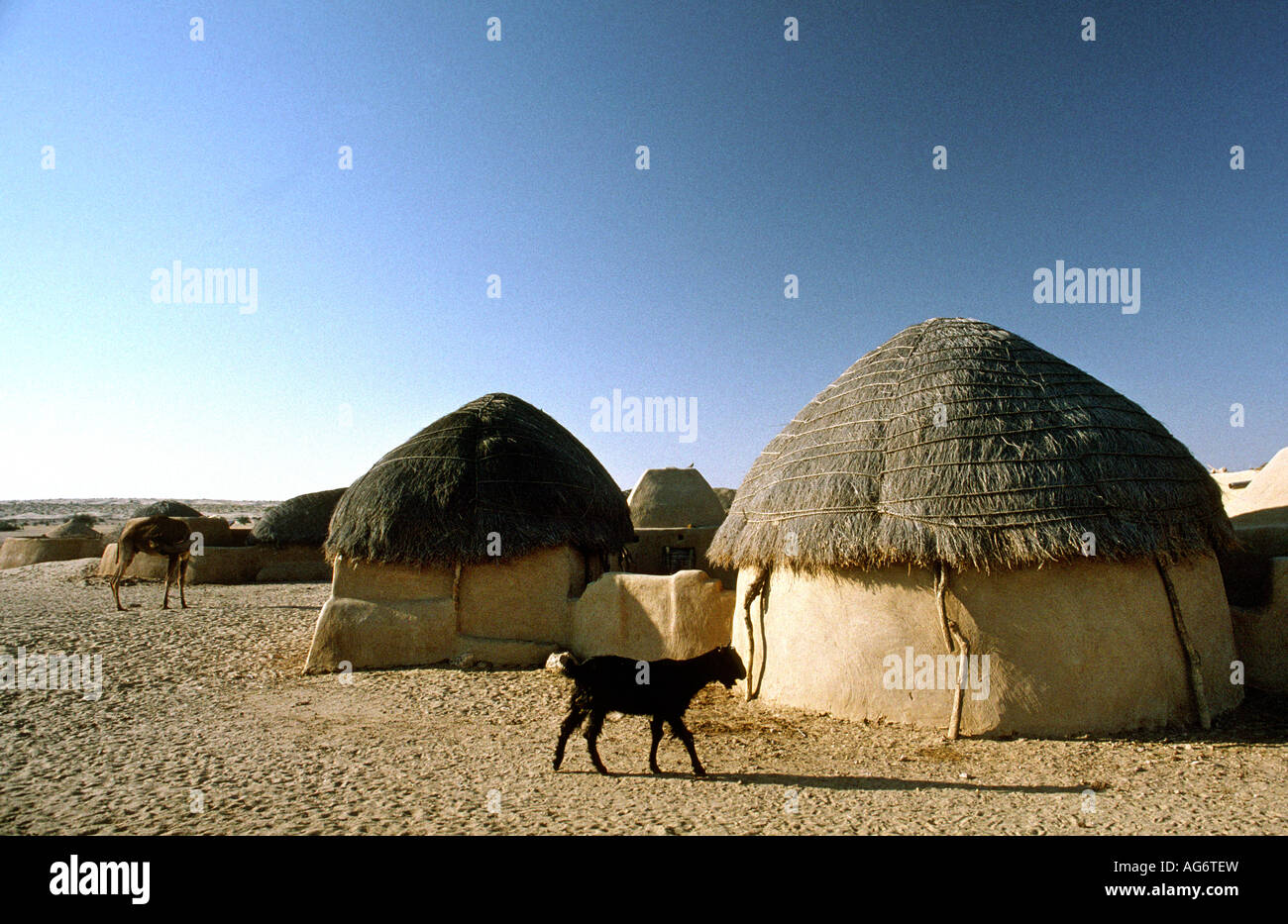 Images of traditional houses in rajasthan