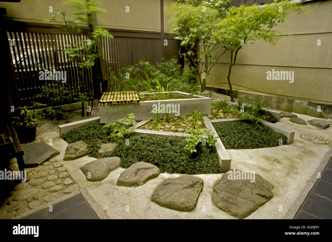 Garden Tsuboniwa Bamboo In Machiya House Kyoto Japan Stock