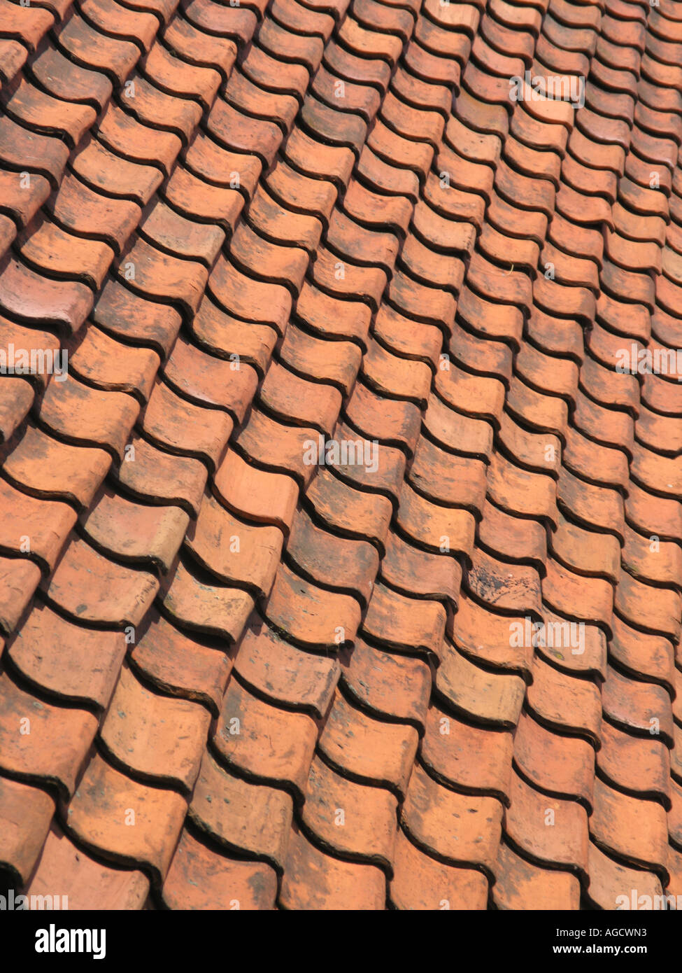 Terracotta roof tiles dutch terracotta roof tiles dutch terracotta roof tiles dailygadgetfo Image collections