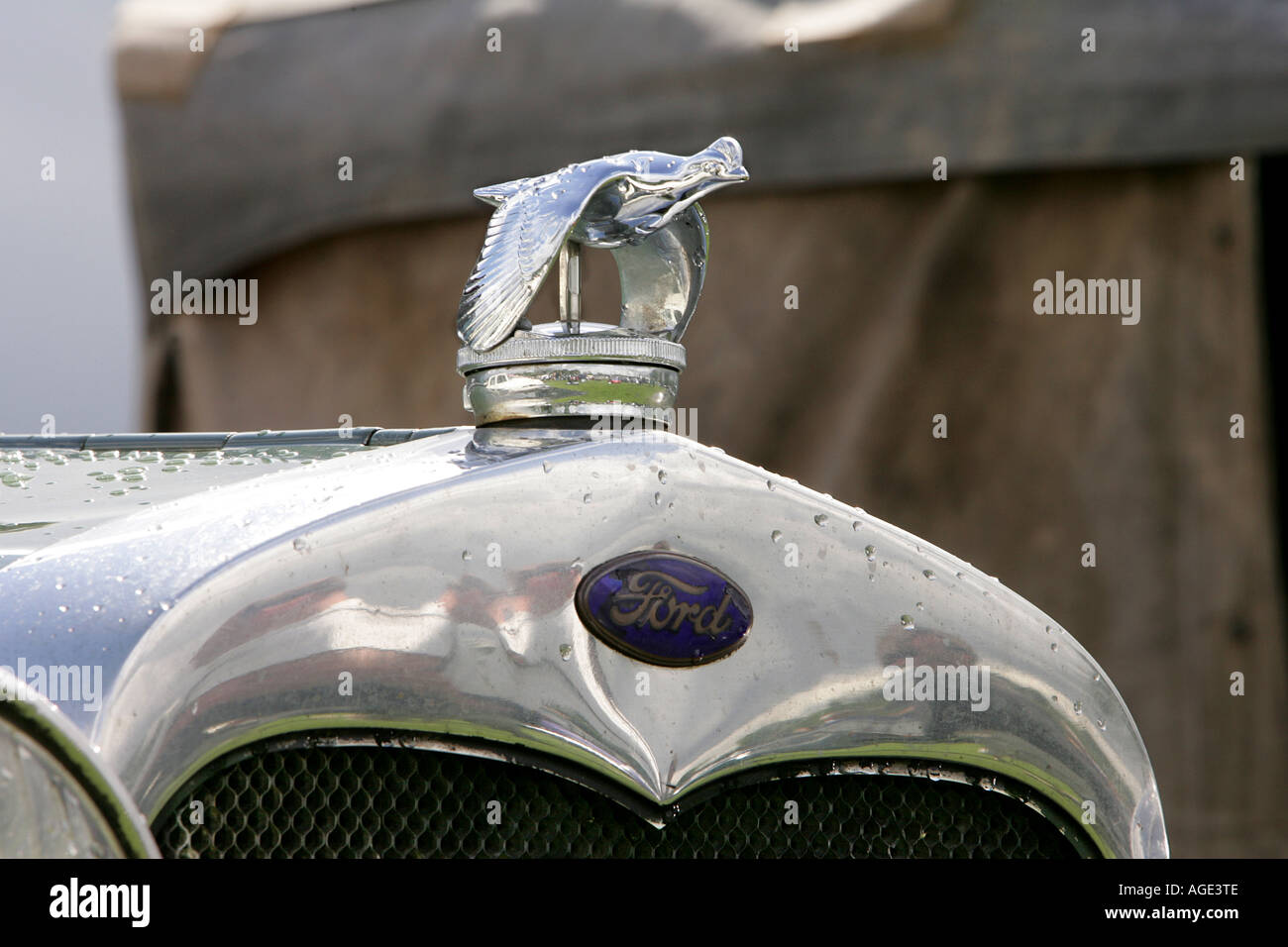 classic car Ford logo close up old history vehicle vintage ...