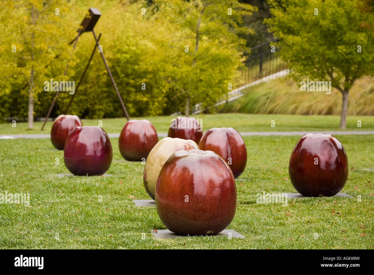 apples glazed ceramic sculpture gustav and ulla kraitz de young art stock photo royalty free. Black Bedroom Furniture Sets. Home Design Ideas