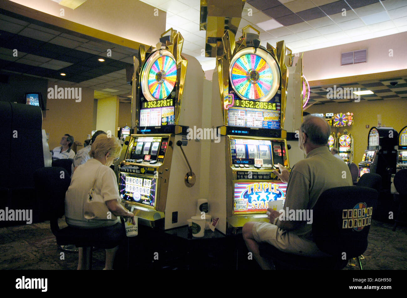 Gambling casino in michigan casino design estimation tools