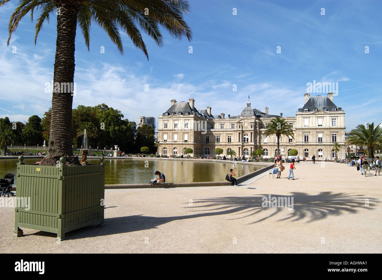 palais du luxembourg and palm tree in jardin du luxembourg paris stock photo royalty free image. Black Bedroom Furniture Sets. Home Design Ideas