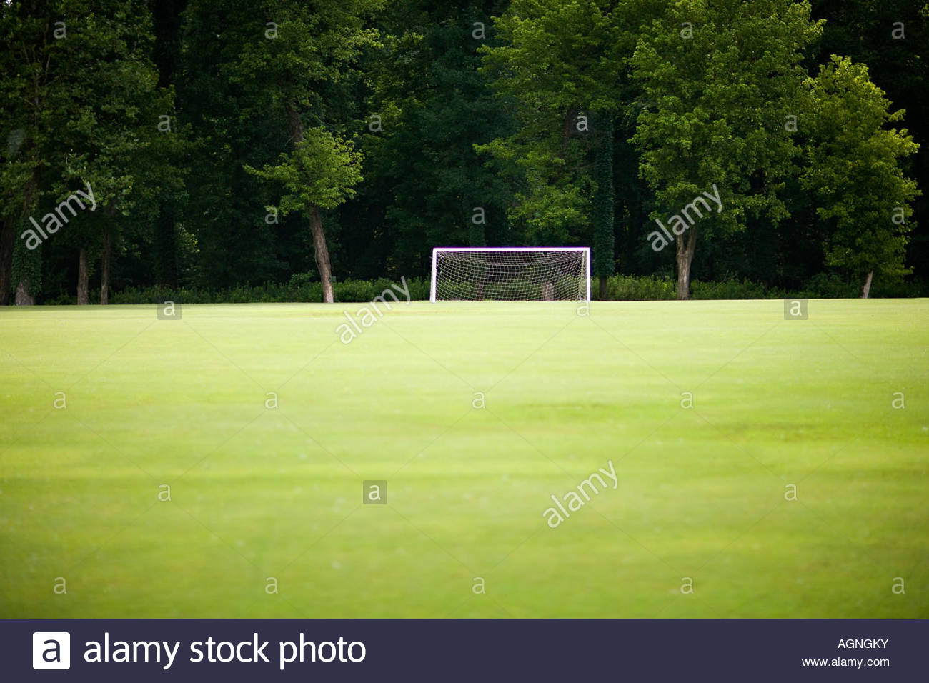 green grass soccer field. Soccer Goal On A Empty Field With Green Grass And Trees E