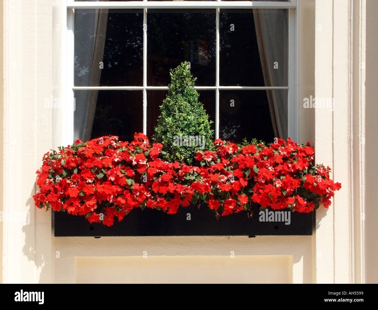 London Window Box With Red Flowers And Small Green Box