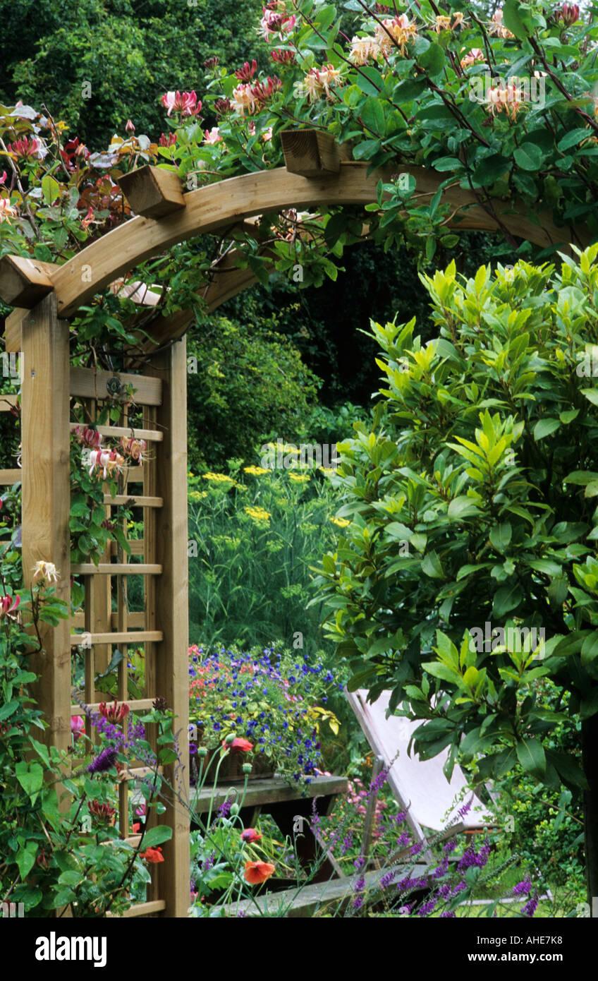 trellis arch wooden honeysuckle bay tree lonicera garden