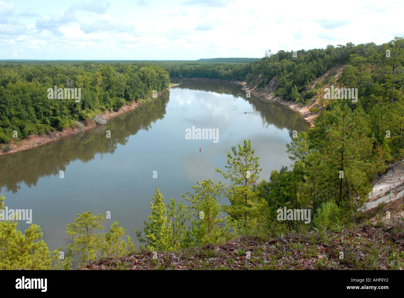 Garden Of Eden Hiking Trail View From Alum Bluff Above Apalachicola Stock Photo 8259505 Alamy
