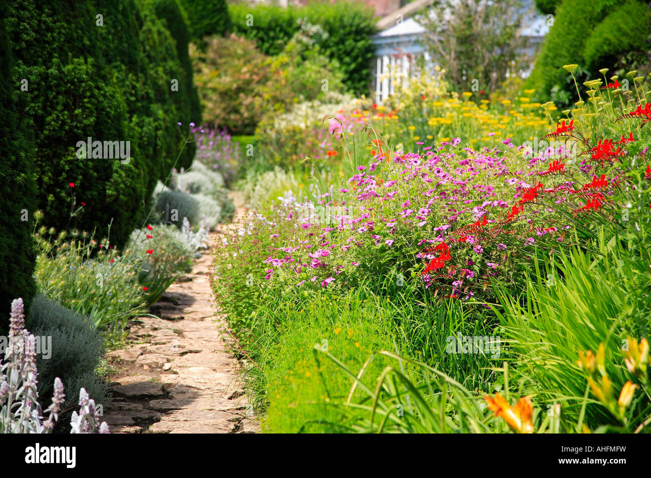 Colourful Plants In Summer Border Beside Path In English