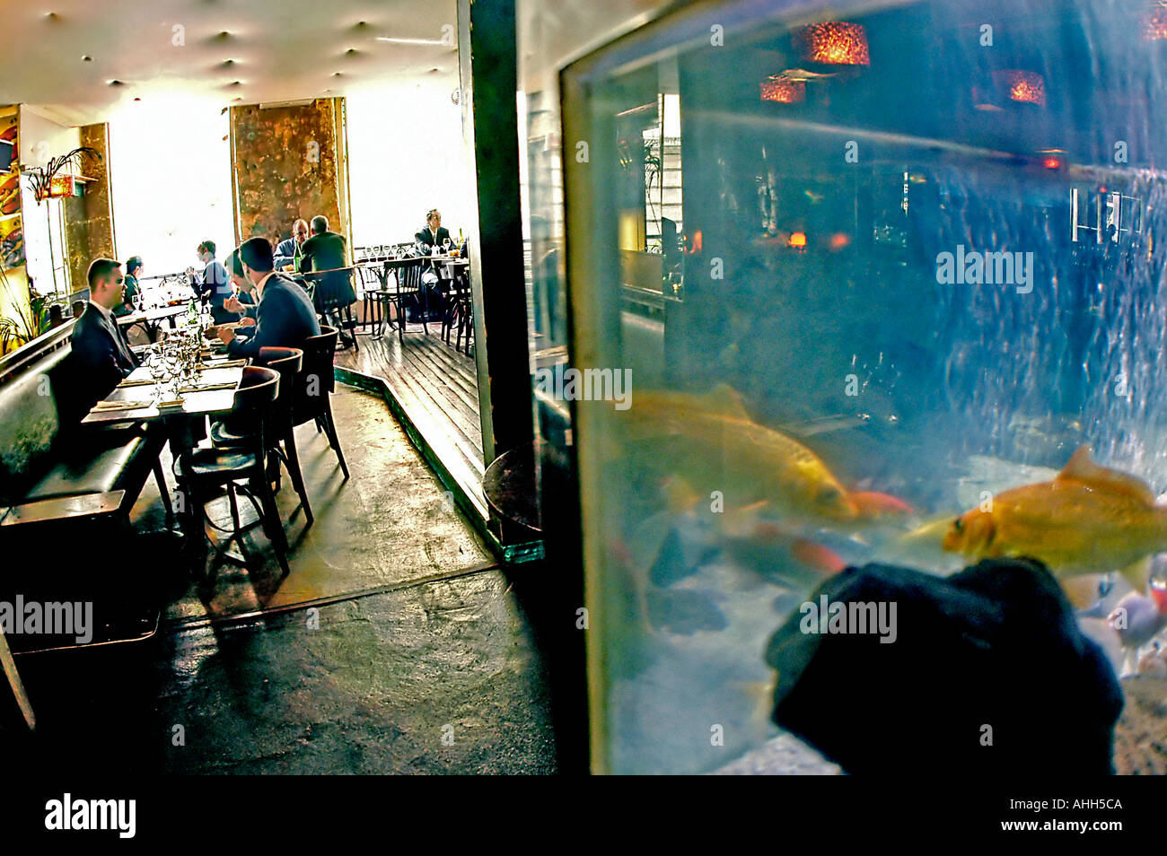 Aquarium in dining room