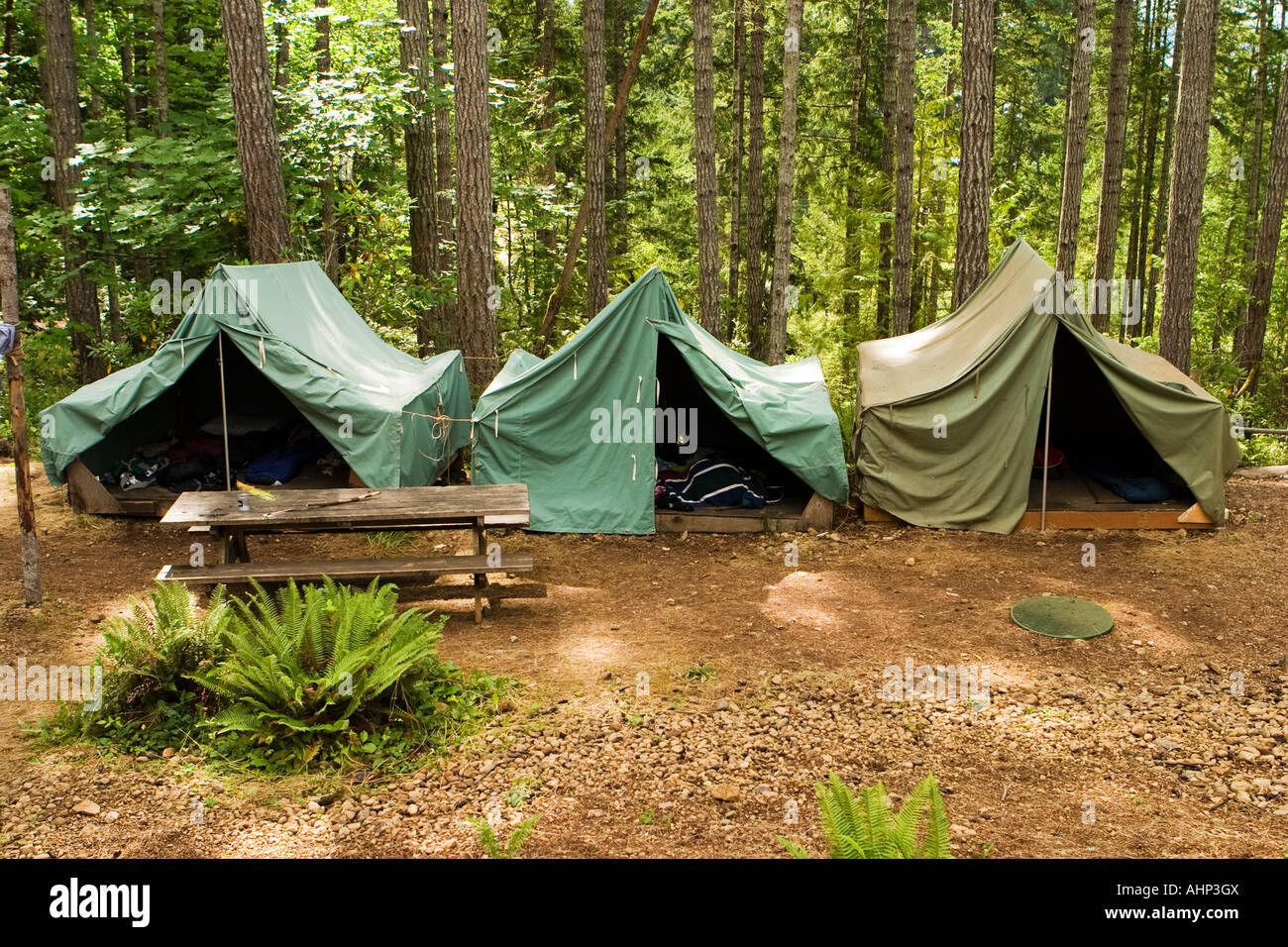 Tents At Boy Scout C& & Tents At Boy Scout Camp Stock Photo Royalty Free Image: 14520889 ...