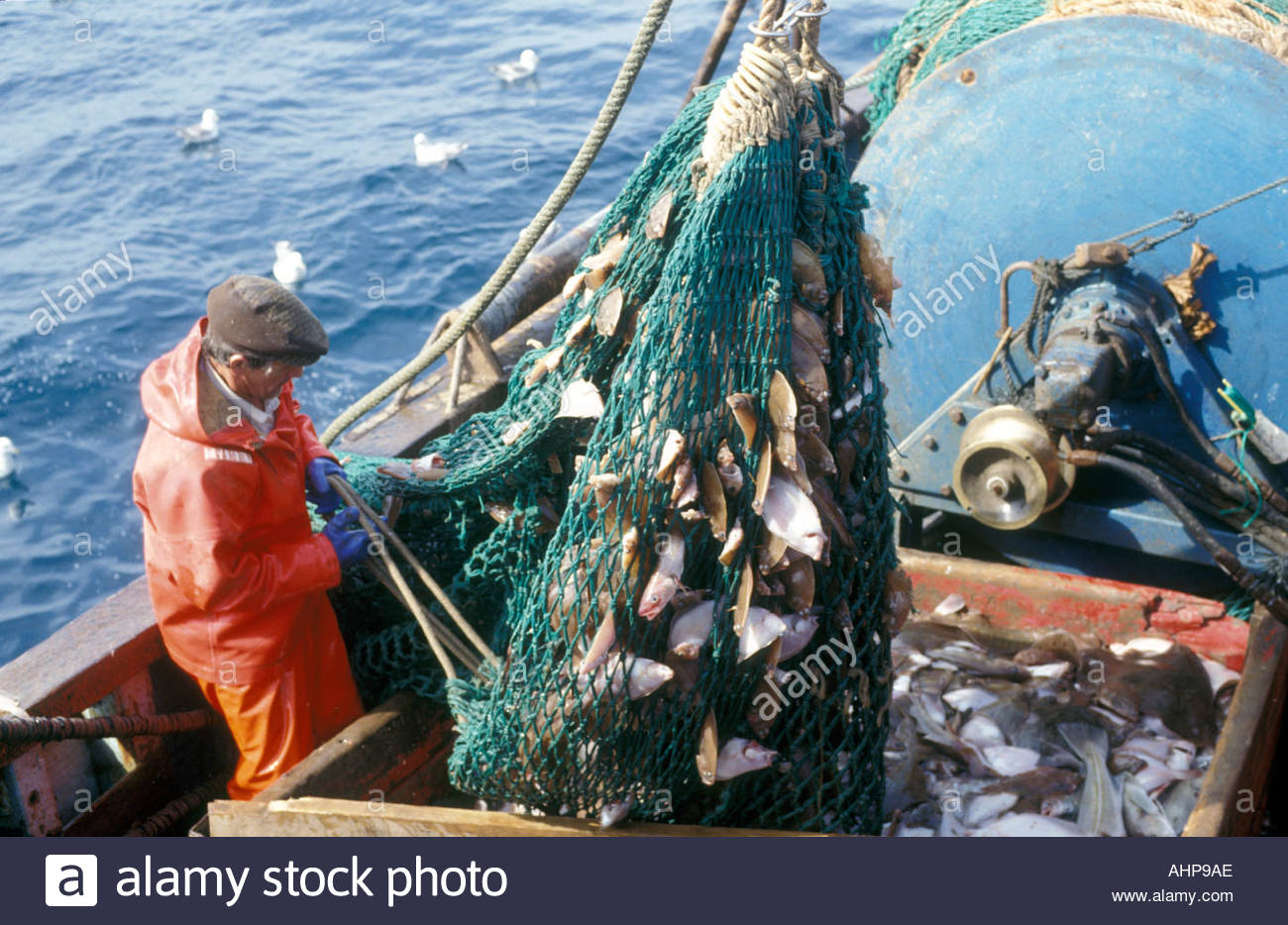 how to catch fish in sea