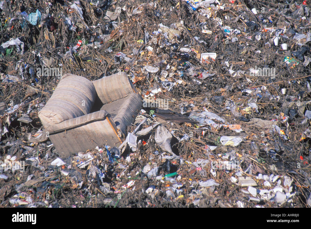 A Couch In The Middle Of An Undesignated Dump In Compton California