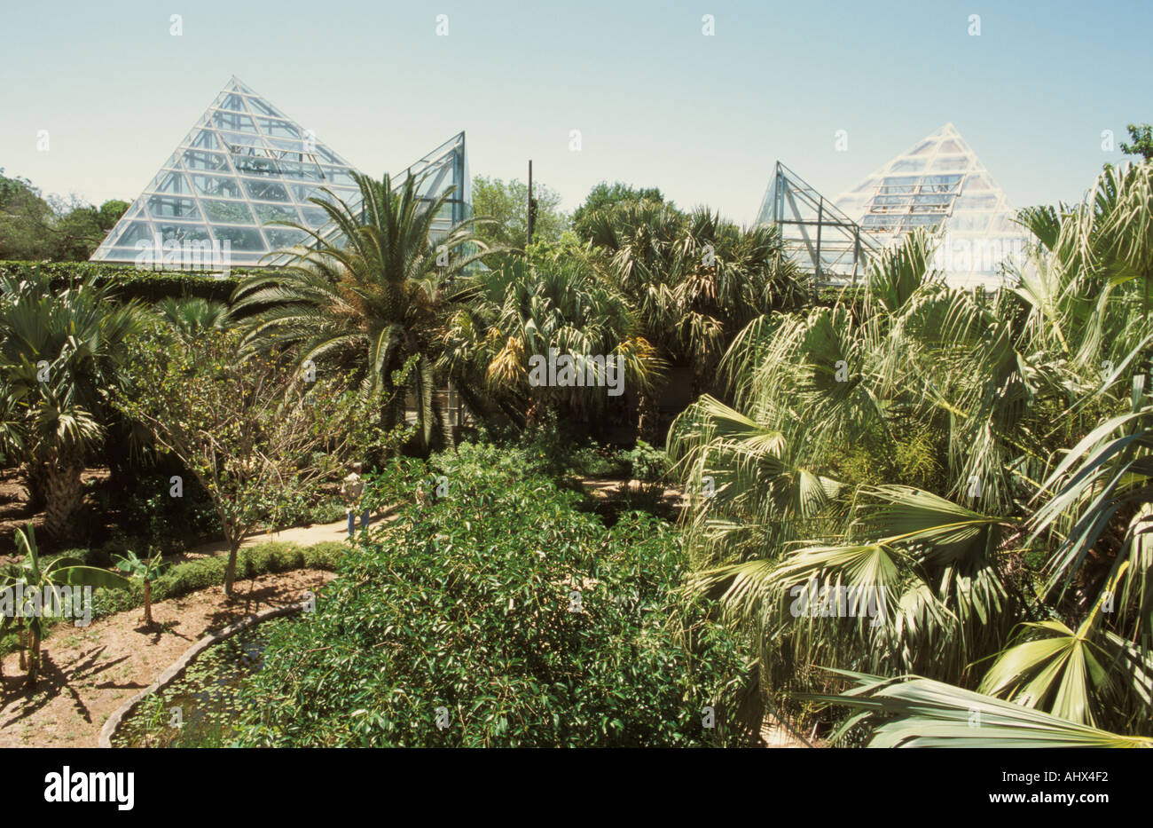 San Antonio Texas USA Botanical Garden Pyramid Shaped Conservatory