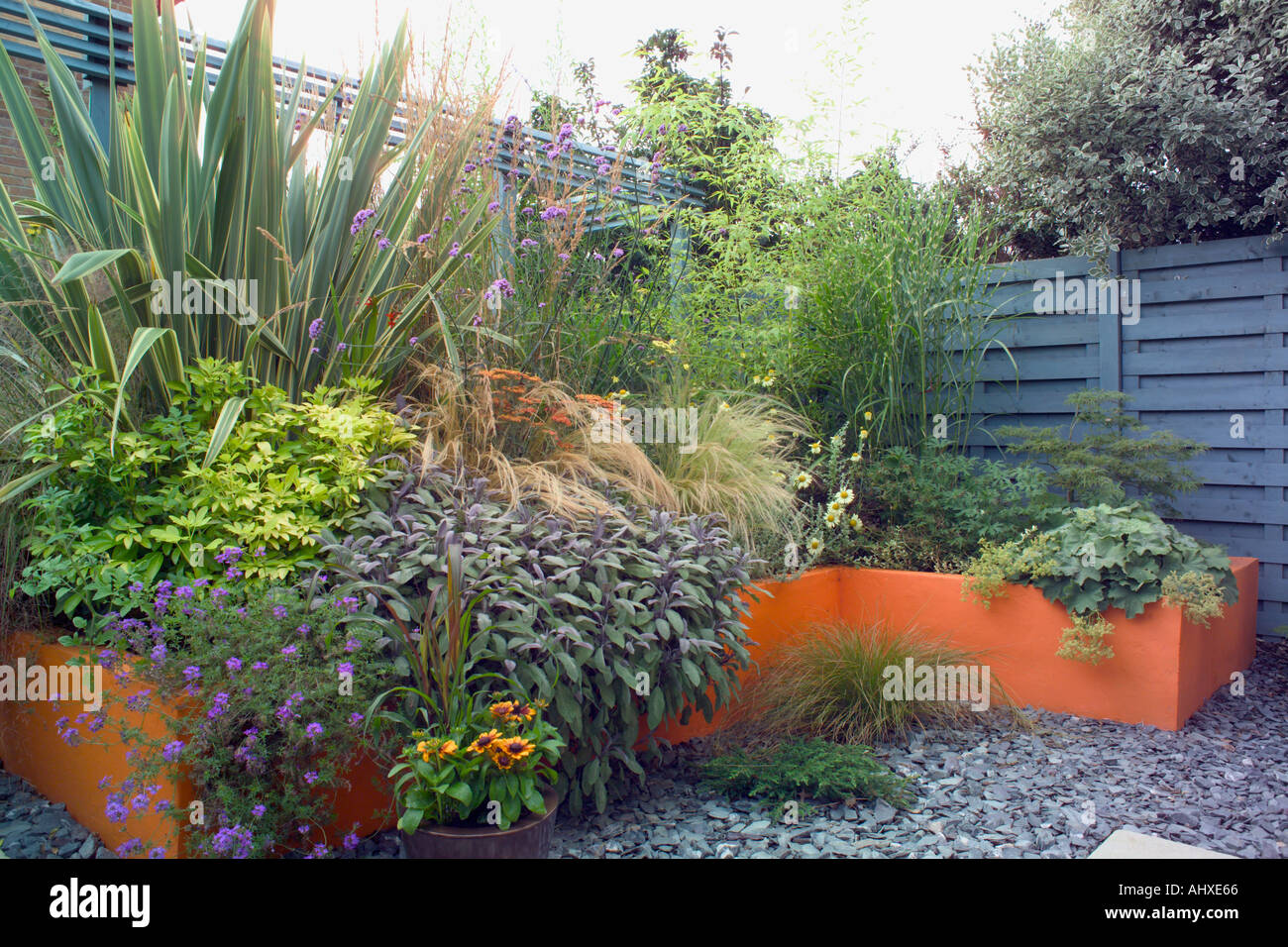 Small Town Garden With Good Structure Colour And Planting Raised Beds  Decking Painted Walls