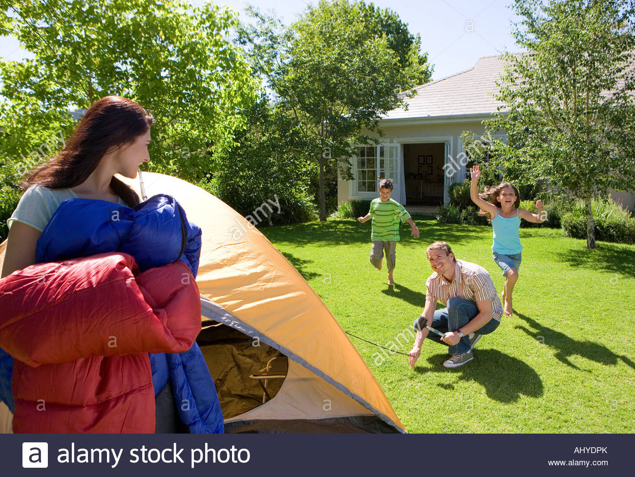 Family assembling dome tent in garden father hammering tent peg into grass mother carrying sleeping bags children running & Family assembling dome tent in garden father hammering tent peg ...