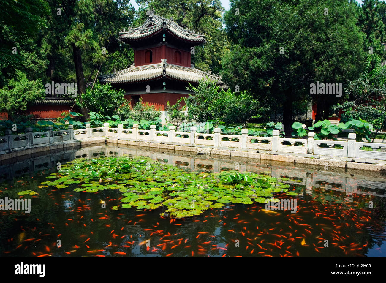 Goldfish Pond In Wofo Si Temple Of The Reclining Buddha