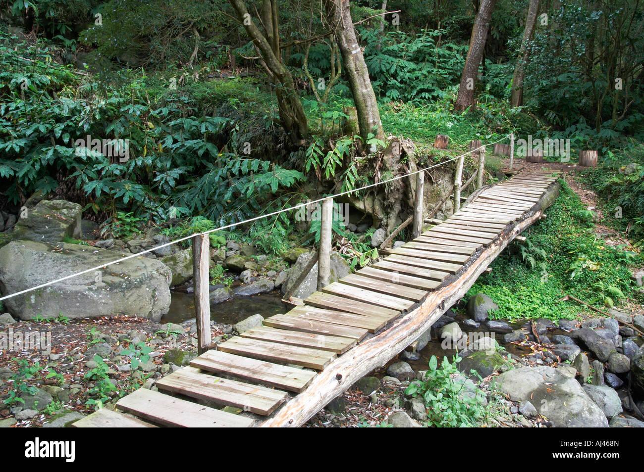 how to build a bridge over a stream