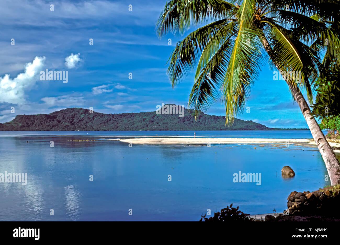 Truk lagoon beach offshore island palm tree chuuk islands federated islands of micronesia south pacific beach